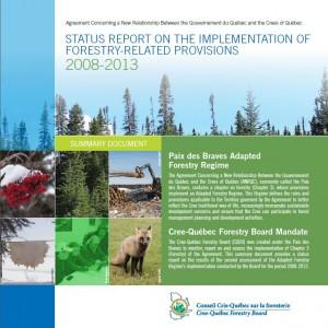 Status Report 2008-2013